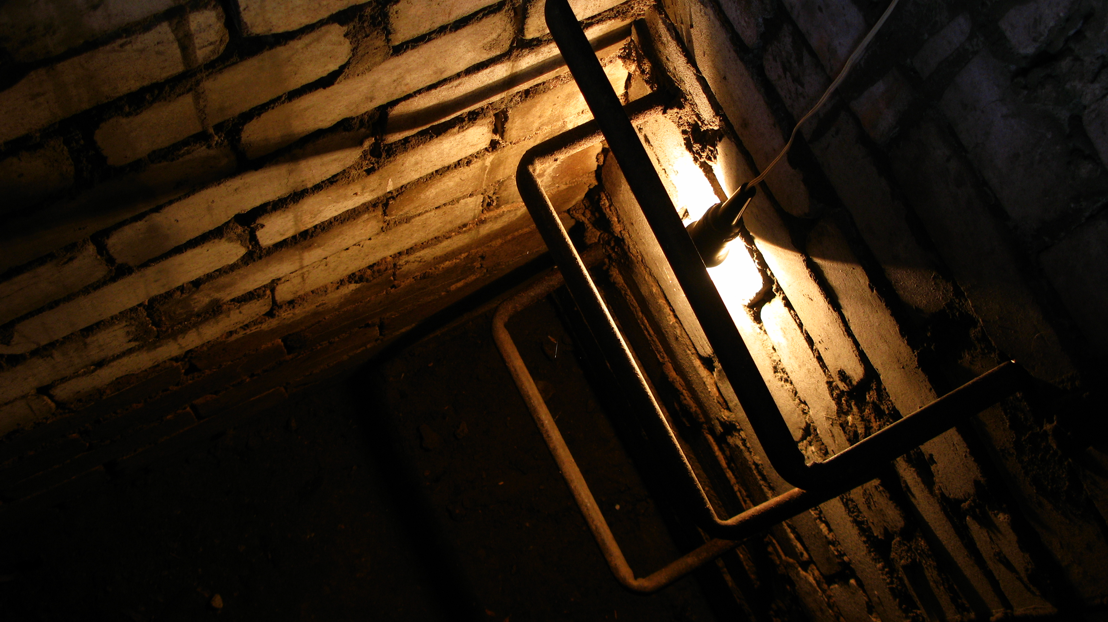 Cellar entrance with a light bulb shining from behind a step of the ladder